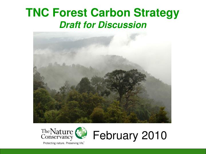 tnc forest carbon strategy draft for discussion n.