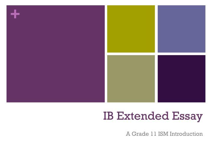 ib extended essay n.