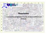 Reactome - a  curated  knowledgebase of human biological pathways and processes