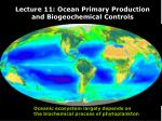 Lecture 11: Ocean Primary Production and Biogeochemical Controls
