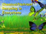 Chemical/Nutrient Recycling in Ecosystems