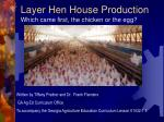Layer Hen House Production