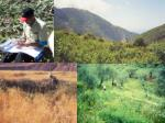 Genetic Reserve Conservation of Crop Wild Relatives: Establishing the Context
