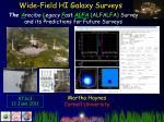 Wide-Field HI Galaxy Surveys