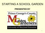 STARTING A SCHOOL GARDEN