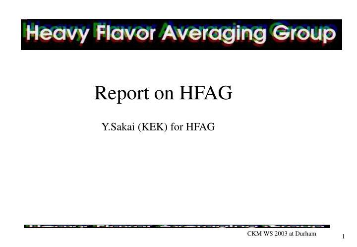 report on hfag n.