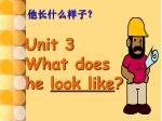 Unit 3 What does he look like ?