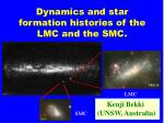 Dynamics and star formation histories of the LMC and the SMC.