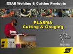 PLASMA Cutting & Gouging