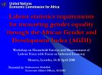 Presented by : Souleymane Abdallah           Economic Affairs Officer, ACGSD