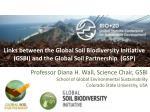 SOIL BIODIVERSITY PROVIDES ECOSYSTEM SERVICES