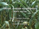 Ukrudt, svampe og skadedyr i korn og frø