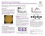 Bacteriocins as novel antibiotics  against the opportunistic pathogen  Pseudomonas aeruginosa