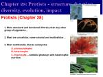 Chapter 28: Protists - structure, function, diversity, evolution, impact